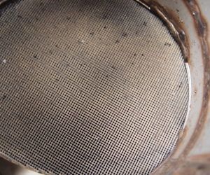 particle filter after